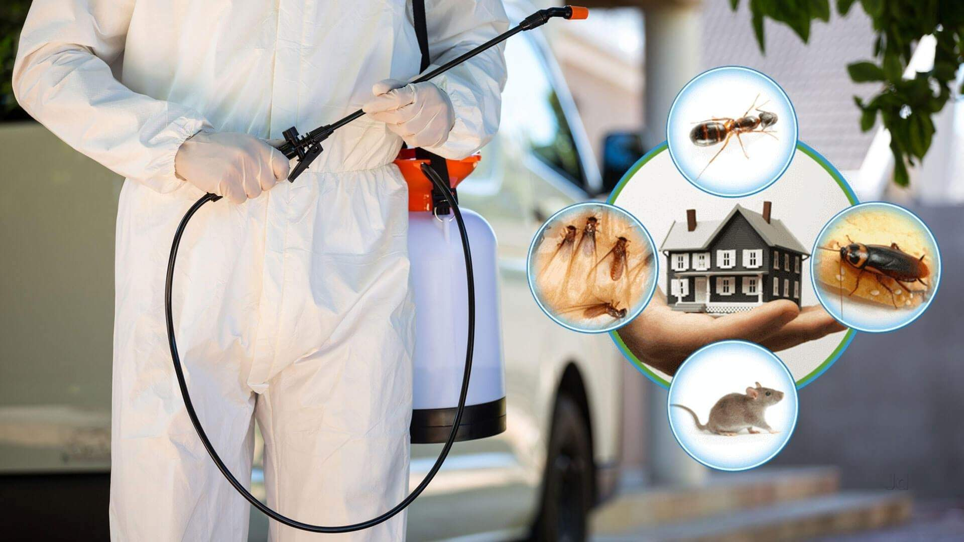 What are the pros of doing pest control in Northampton?