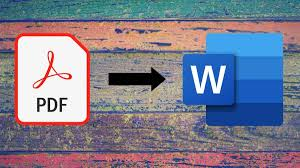 The document converter PDF to Word has everything you need