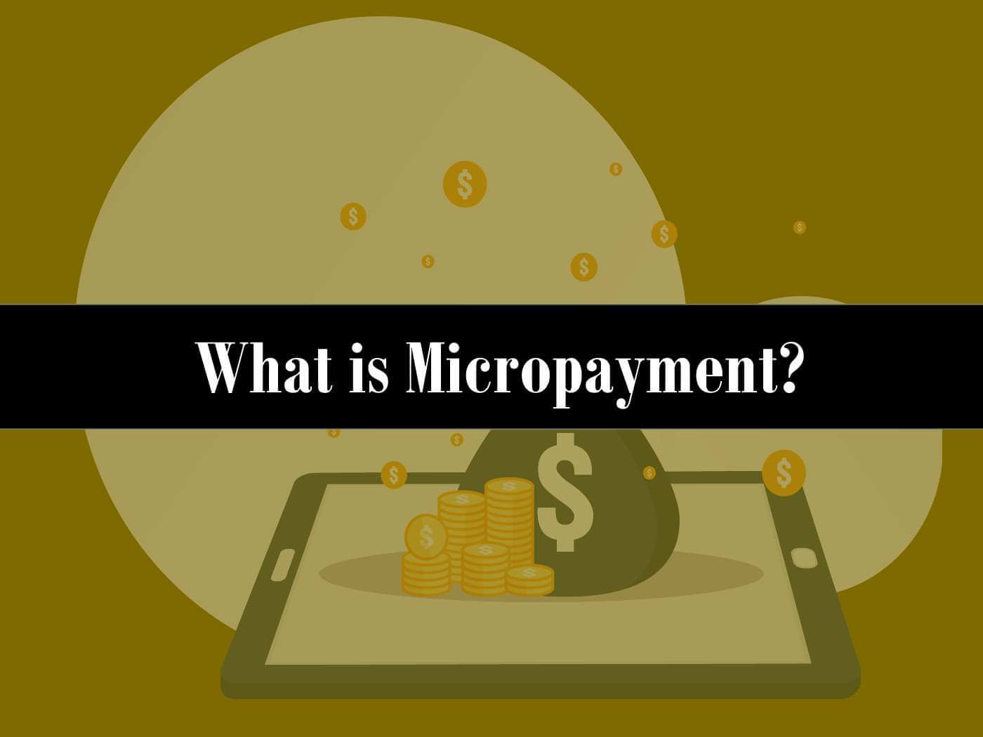 For What Is Micropayment Policy Useful?
